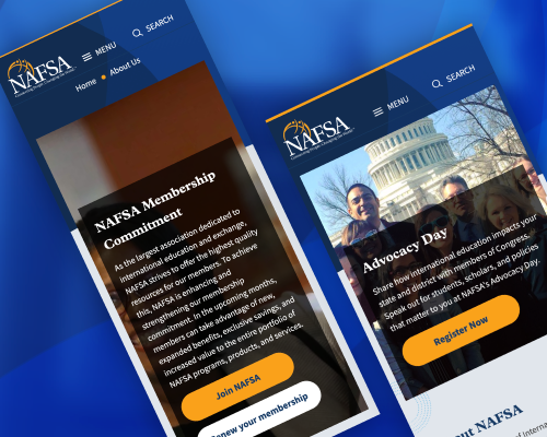 NAFSA Case Study Mobile