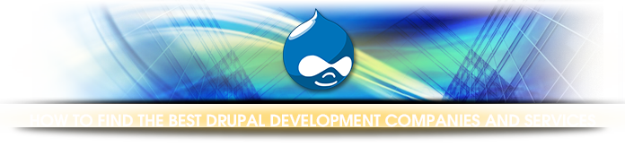 How to find the best Drupal development companies